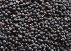 1oz Juniper Berries Whole
